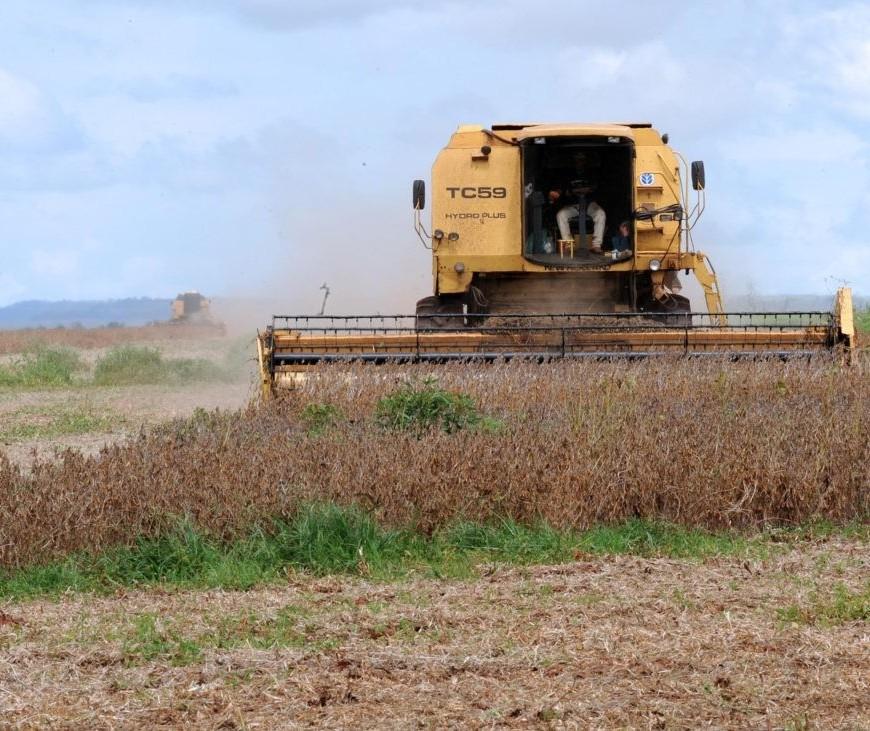 Agronegócio foi responsável por 76,6% das exportações do Paraná em 2019
