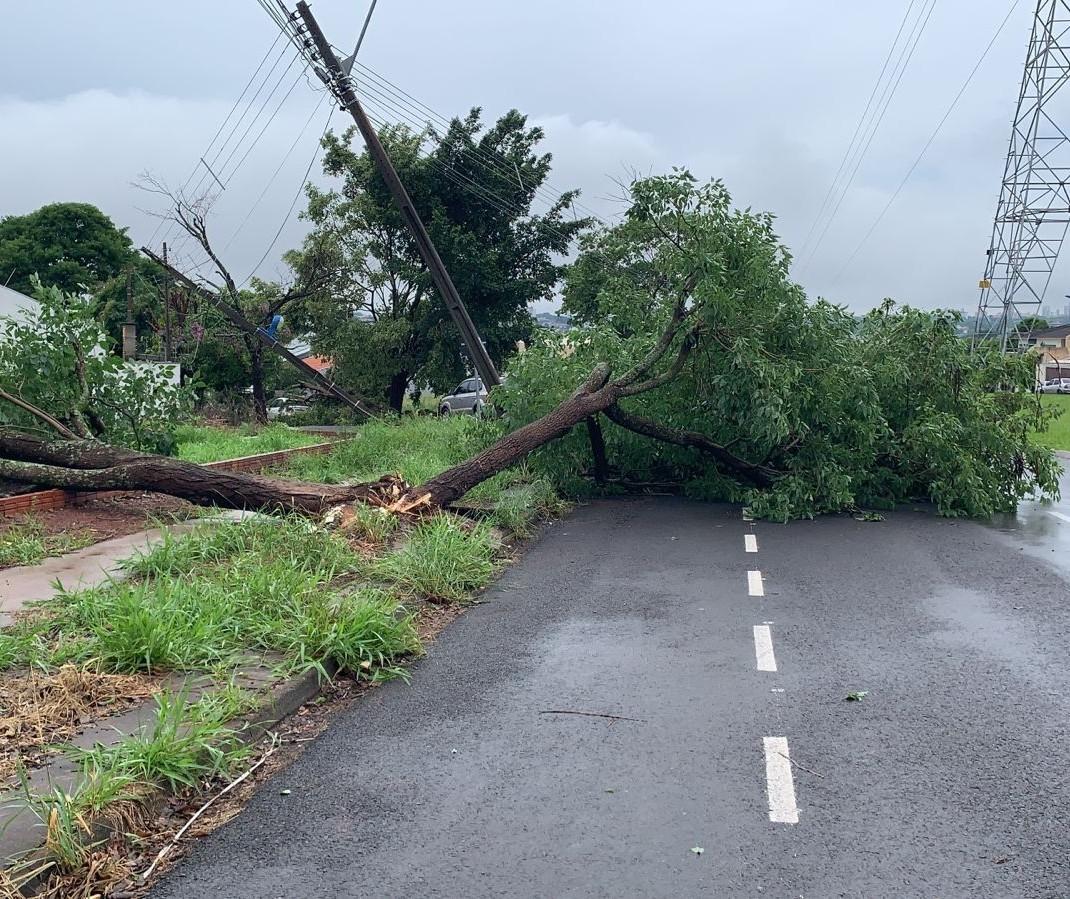 Com 3,5 mil imóveis sem luz, equipes ainda trabalham para recuperar danos causados por temporal em Maringá