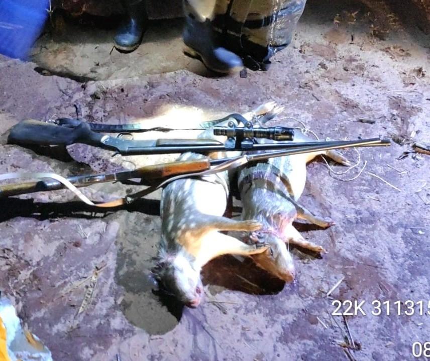 Dupla é presa e multada em R$ 10 mil por caça de animal silvestre