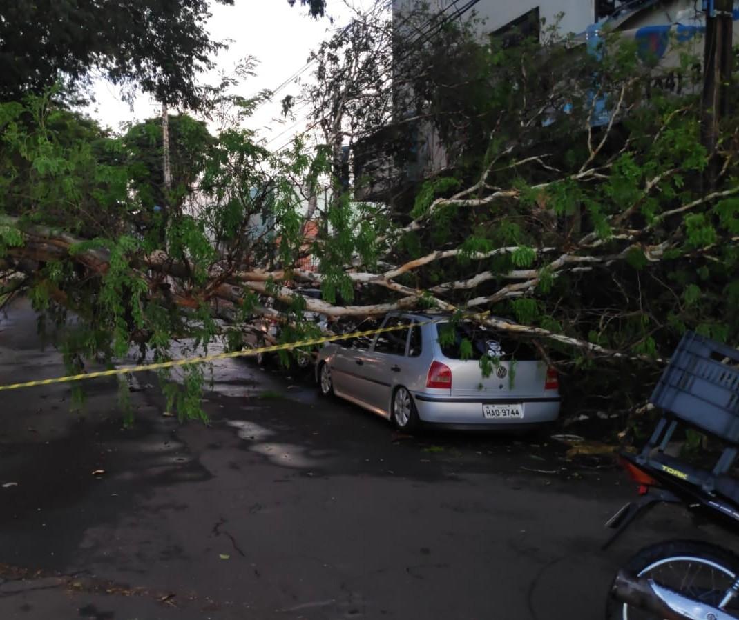 Chuva rápida causa estragos em Maringá