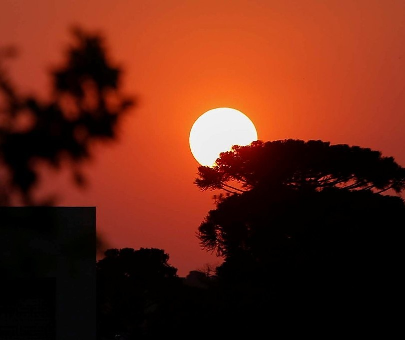 Maringá registra em agosto umidade do ar igual a do deserto