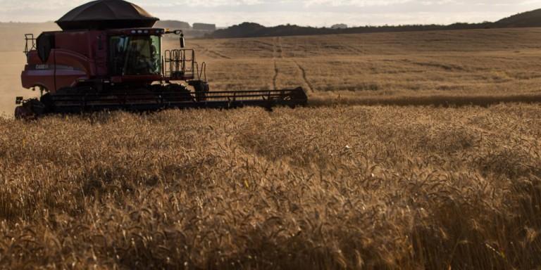 Agronegócio alavancou crescimento do PIB em 2020