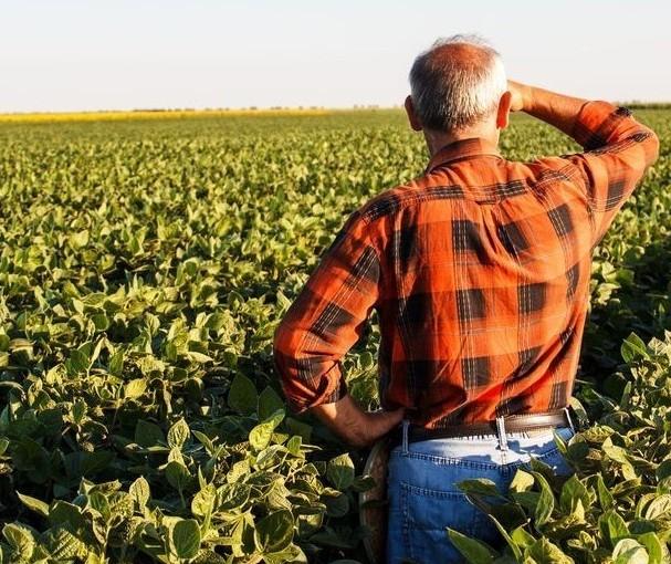 Nesta crise, no agro alguns setores levam uma 'pancada' e outros crescem