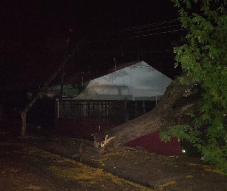 Pelo menos 1,6 mil residências continuam sem luz em Maringá e região