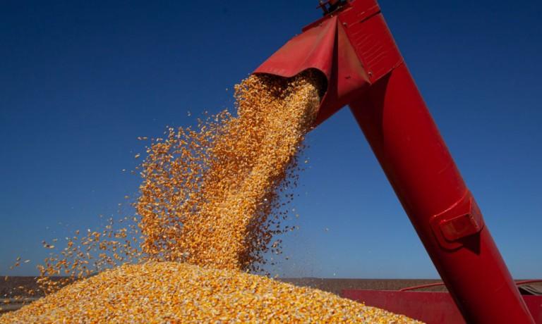 Estimativas de plantio de soja e milho dos EUA ficam abaixo do esperado