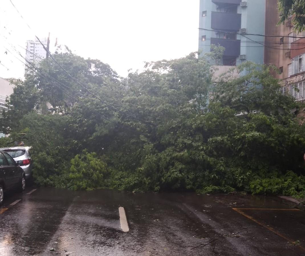 CBN Paraná repercute estragos do temporal do fim de semana