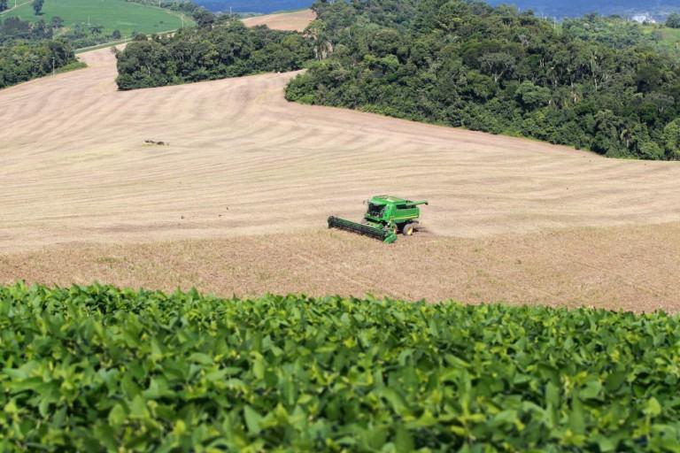 Preço dos produtos agropecuários seguem elevados no 1º trimestre de 2021