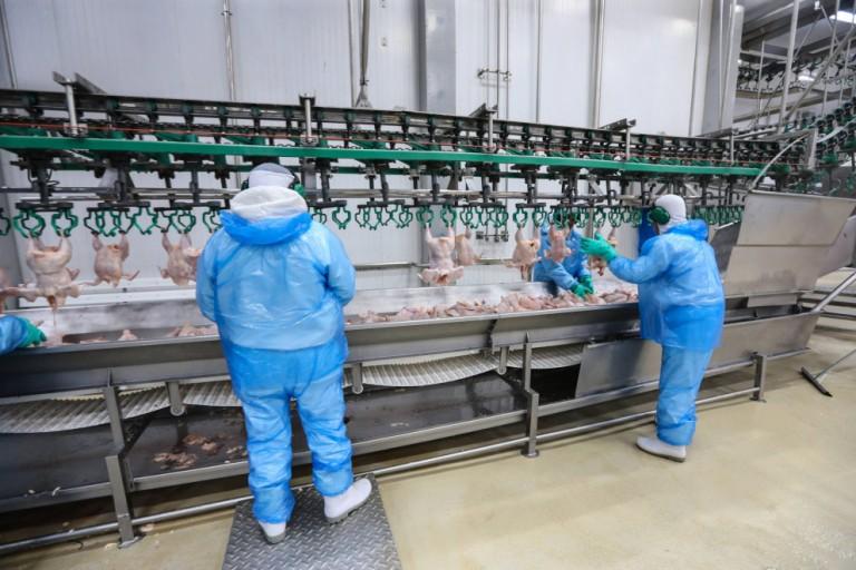 Frigorífico da BRF voltará a exportar perus para o México