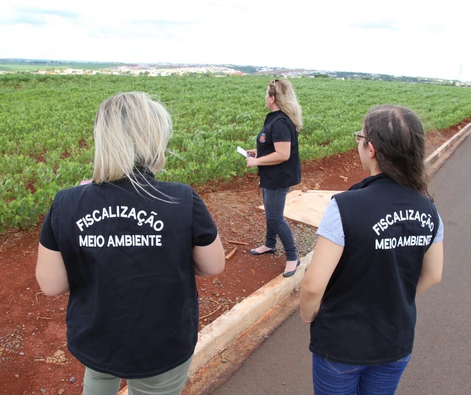 Abatedouro também é responsável por mau cheio em Maringá