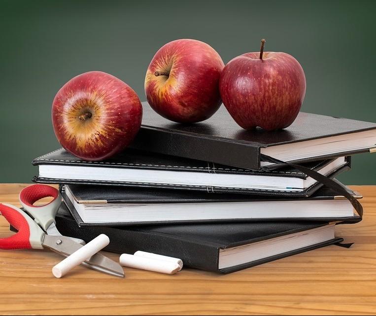 Pedagogia é o curso que que mais tem alunos no país