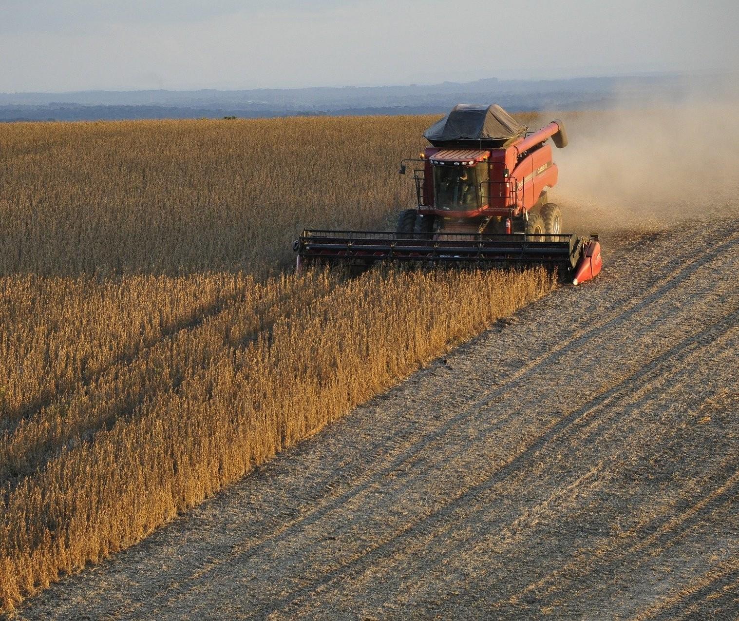 Exportações de soja e açúcar do Brasil no mês já superam agosto de 2019