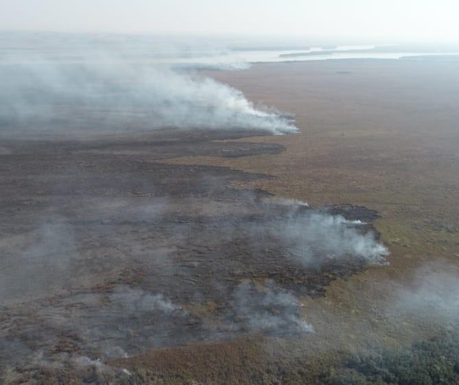 Brigadistas de Brasília chegam para ajudar no combate ao fogo em Ilha Grande
