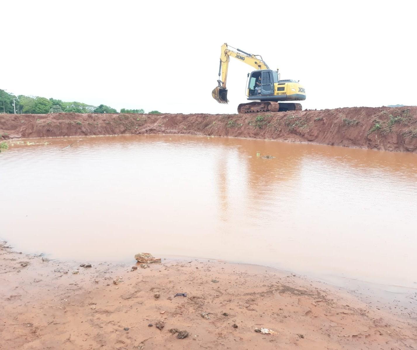 Vegetação flutuante foi retirada de caixa de contenção de água em Paranavaí para retirada de jacaré