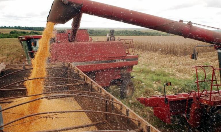 Importações de grãos pela China deve manter os preços em alta