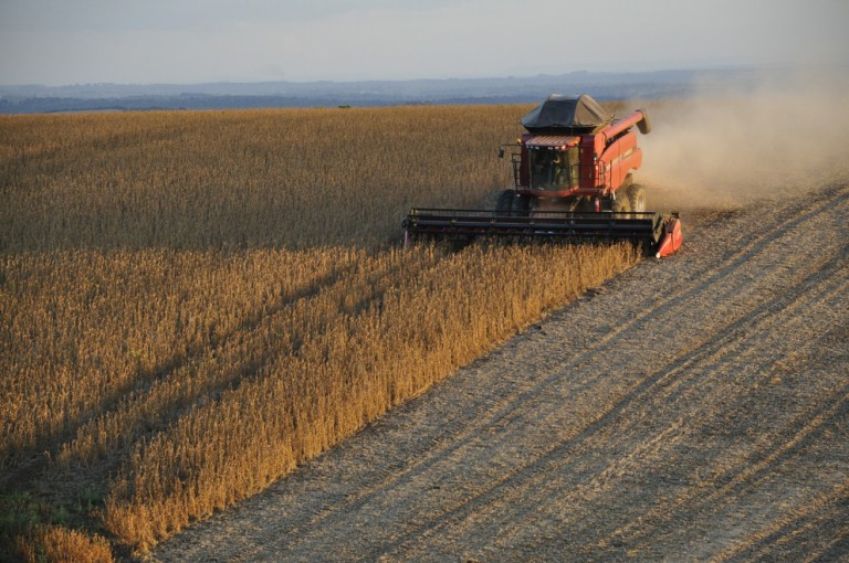 Produção brasileira de soja vai ultrapassar 133 milhões de toneladas em 2021