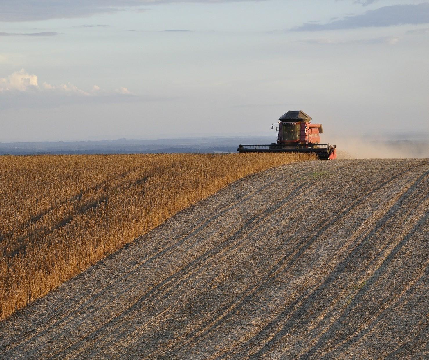 Datagro eleva safra 2019/20 de soja do Brasil para 122 milhões de toneladas