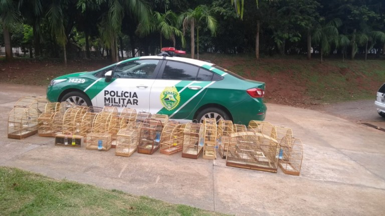 Com 45 aves aves nativas em cativeiro, homem é preso e multado em R$ 22,5 mil