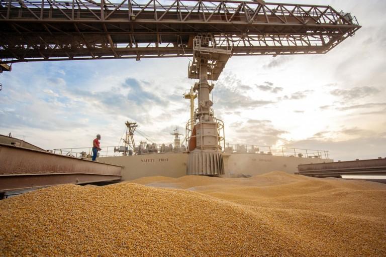 Exportações nos portos do Paraná geraram saldo positivo de U$ 6,5 bi em 2020