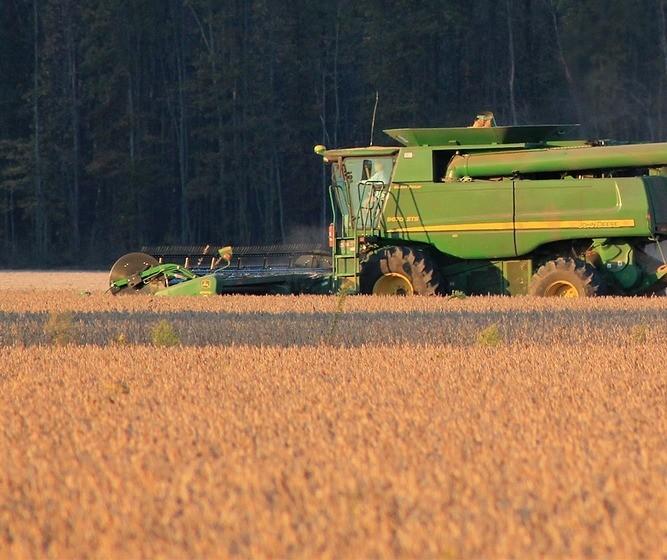 70% da soja deve estar vendida quando a colheita iniciar, diz StoneX