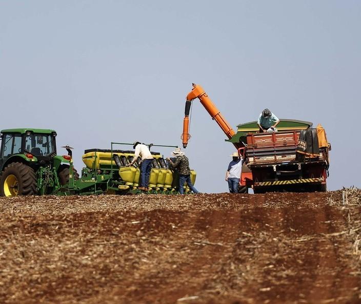 Ipea aumenta previsão de alta do PIB da agropecuária