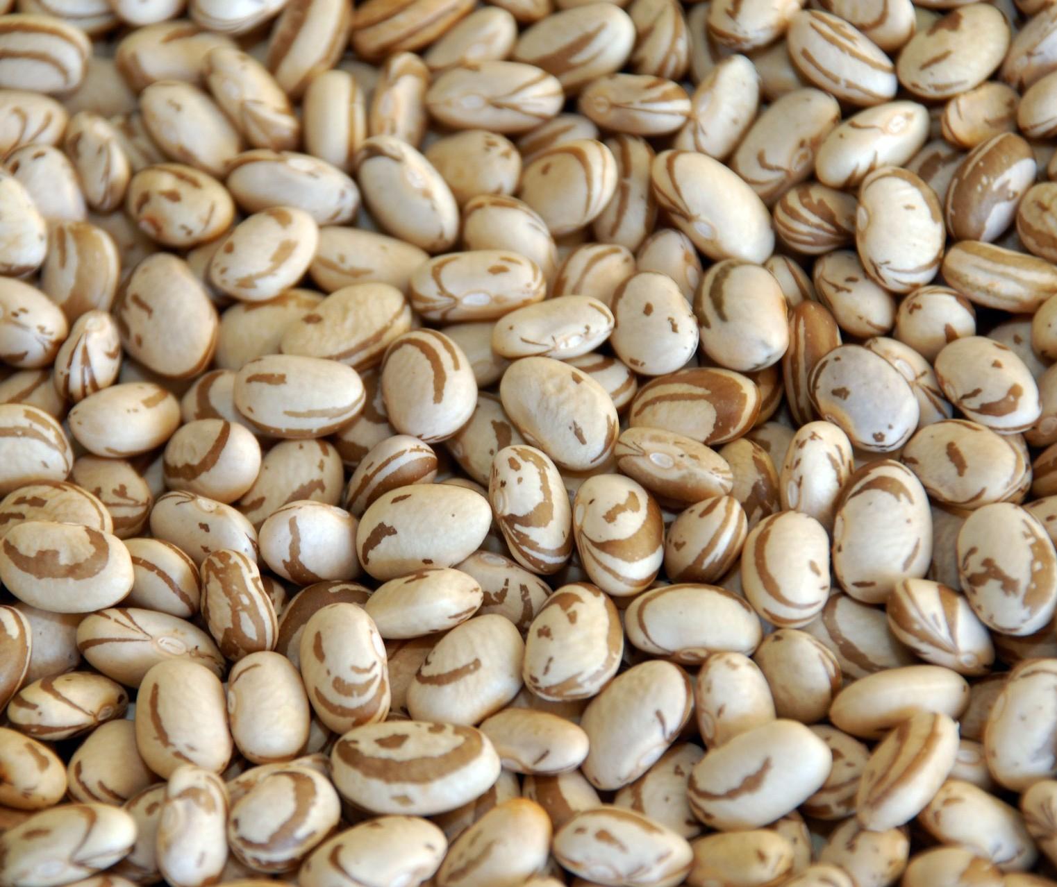 Terceira safra de feijão tem produção estimada de 2 mil toneladas