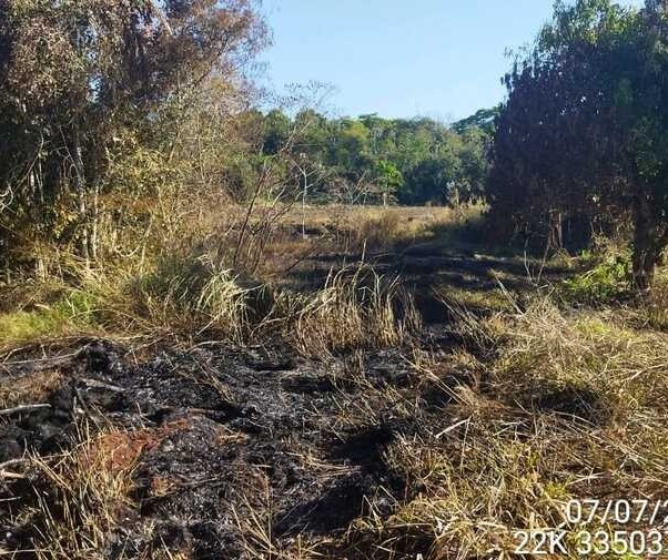 Dono de sítio é multado em R$ 30 mil por destruir vegetação nativa na região