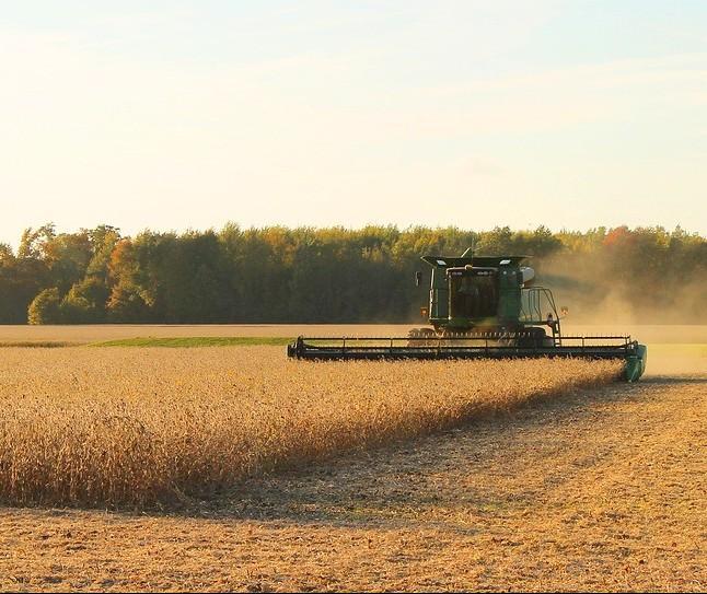 Colheita da soja começa na região noroeste do estado