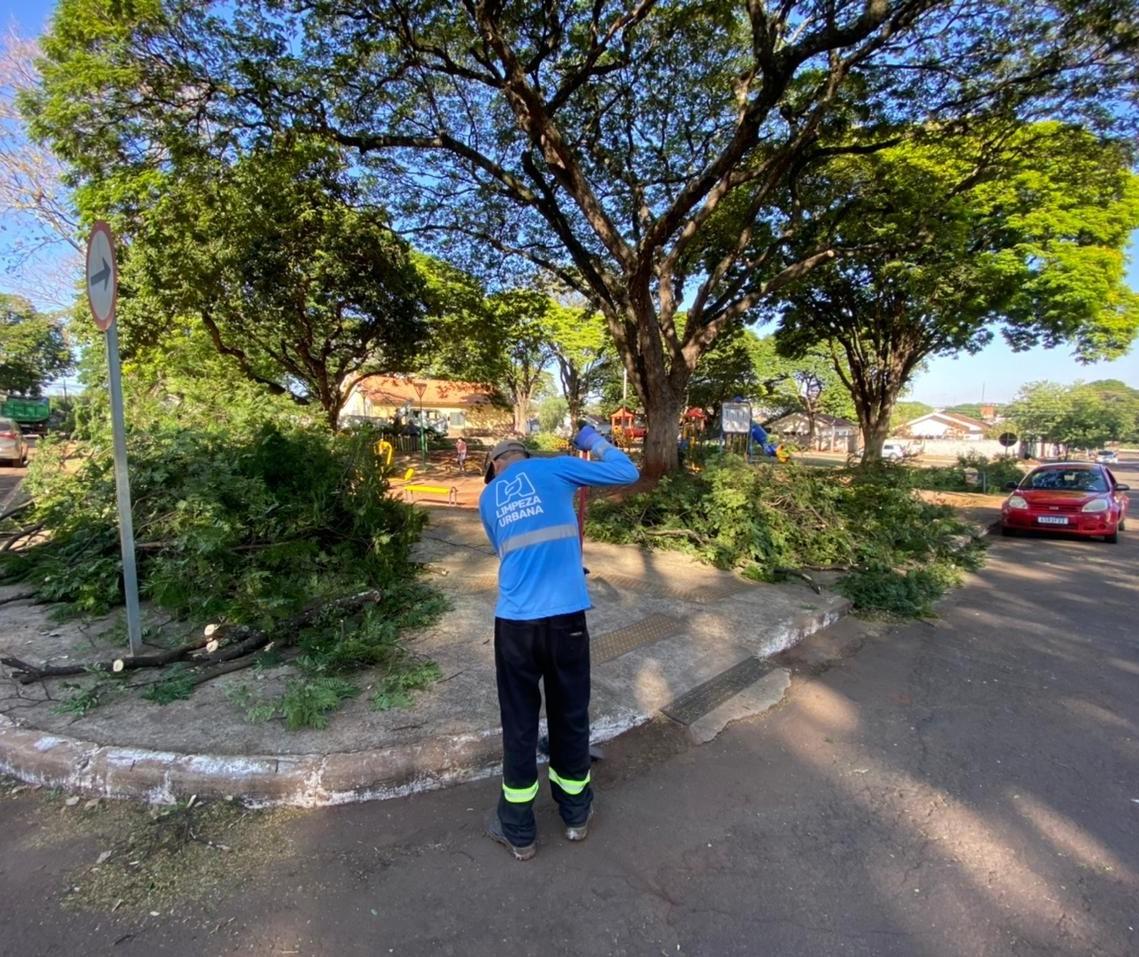 Lei que proíbe que se jogue lixo na rua entra em vigor em Maringá