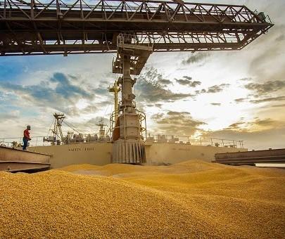 Produção de grãos da safra 2020/21 deve ser maior da história, diz Conab