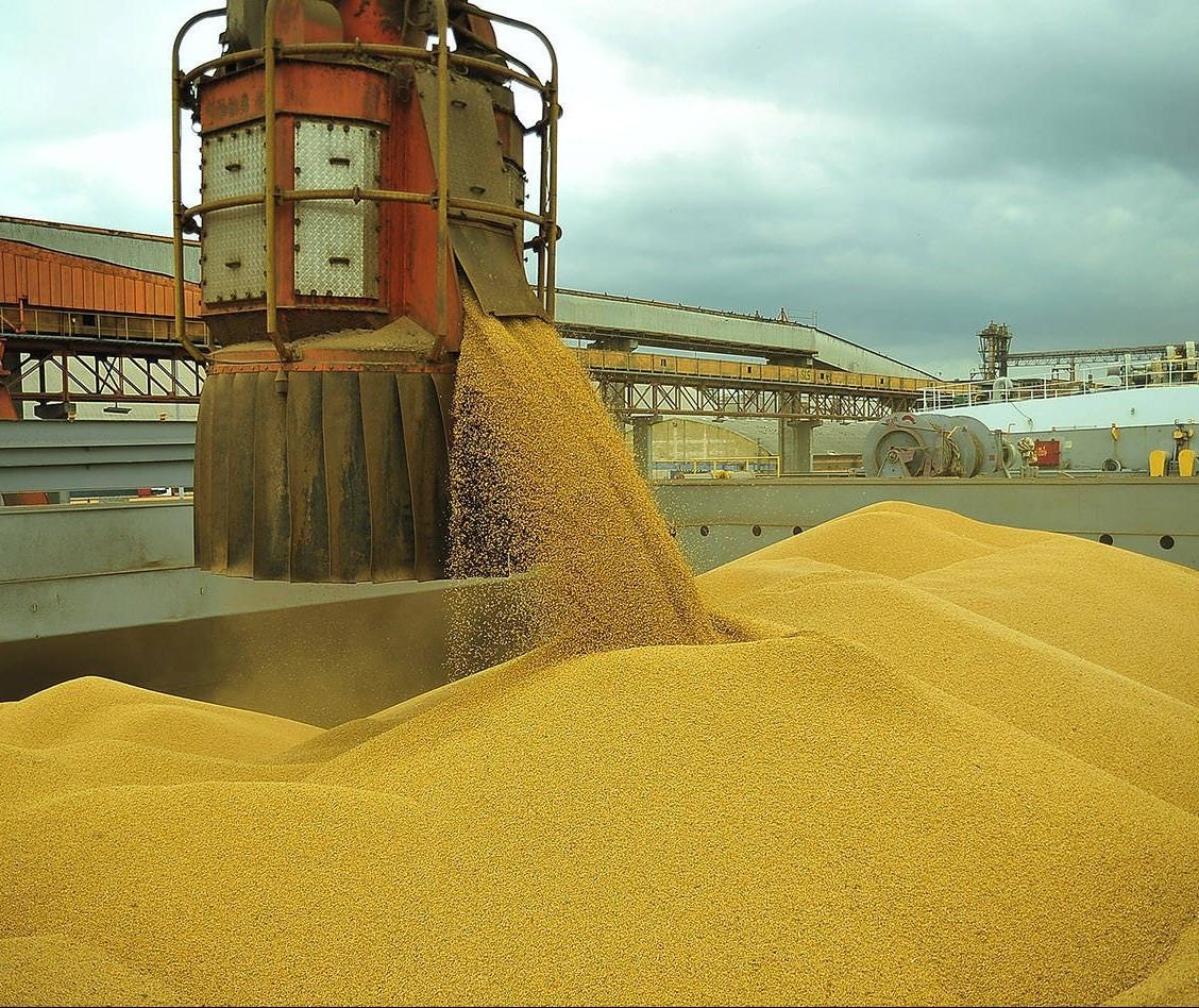 Exportação de milho do Brasil pode recuar mais de 60% em julho