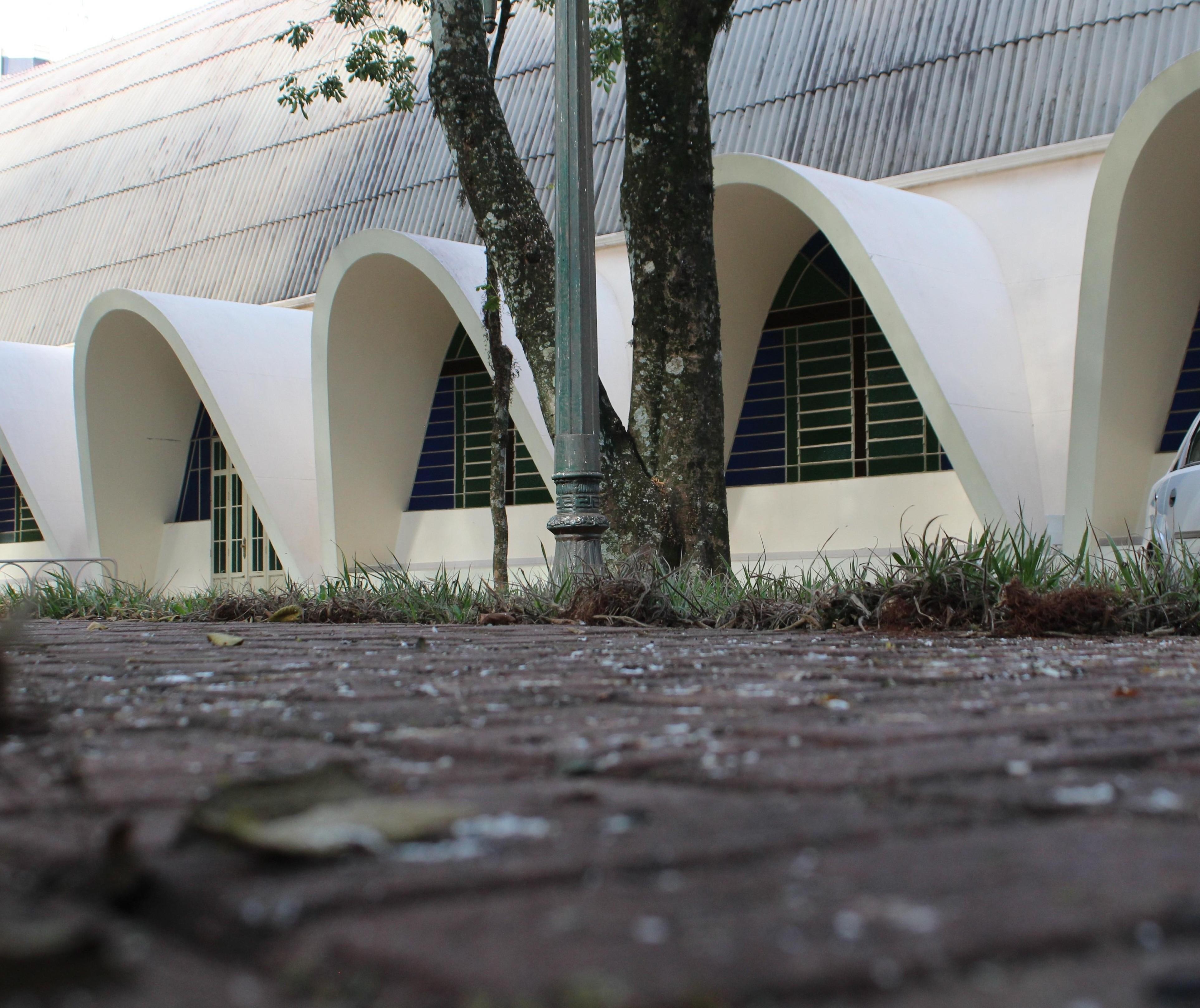 Pombos impedem igreja de fazer procissões externas em Cianorte