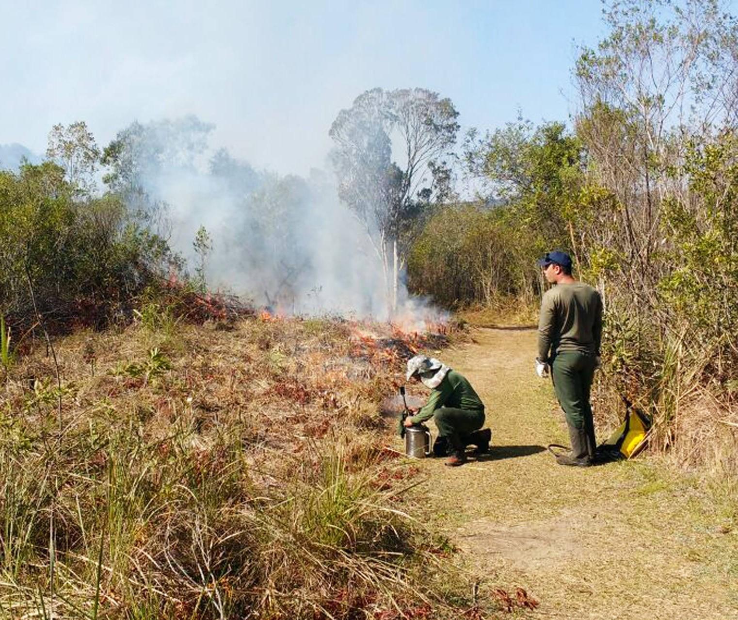 Risco de incêndios em áreas rurais coloca o Paraná em alerta