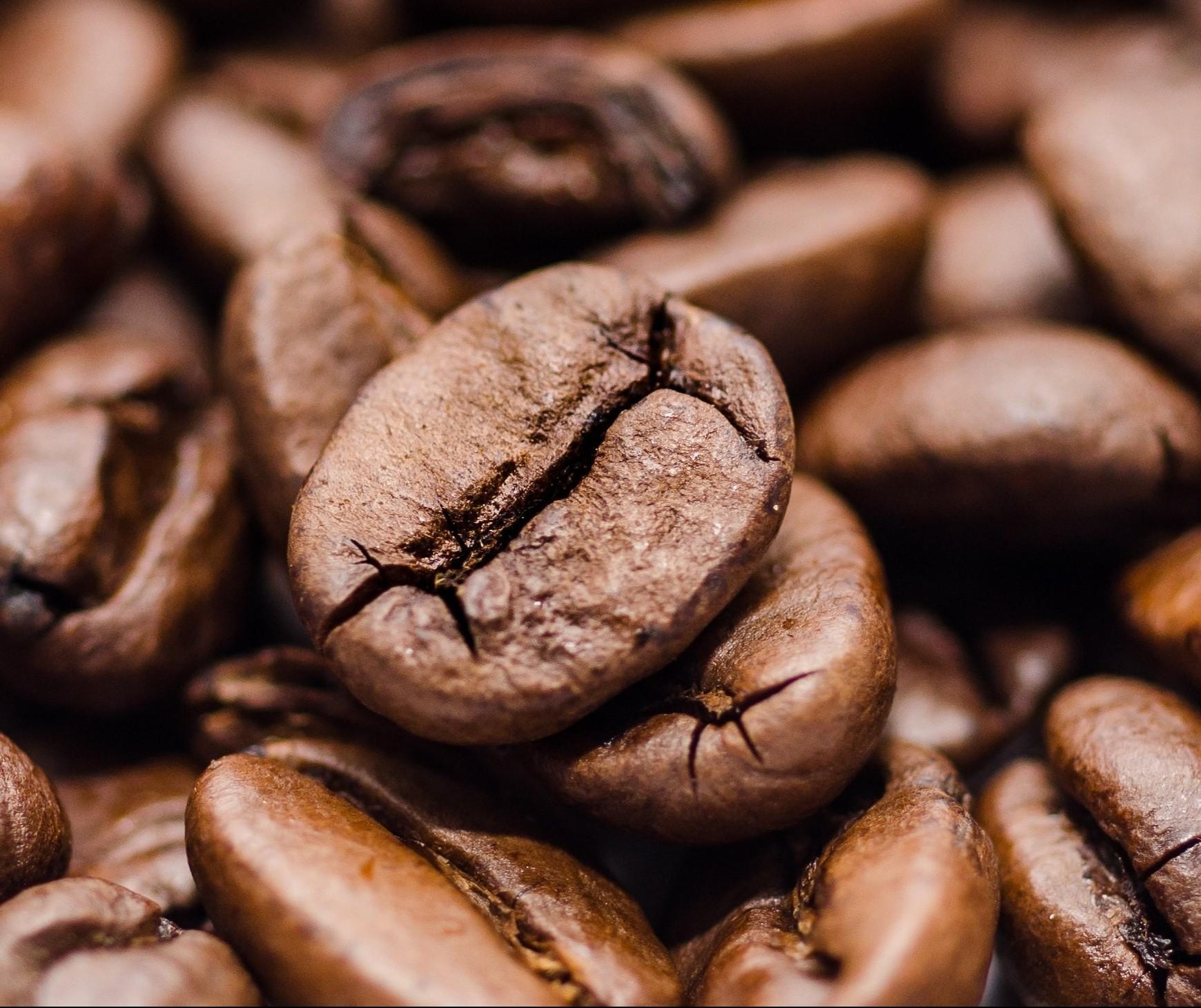 Café em coco custa R$ 8,15 na região de Maringá