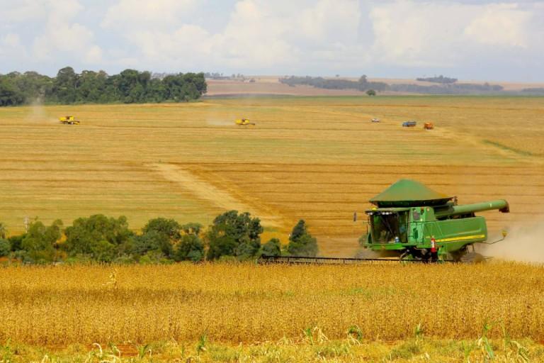Preços da terra para atividade agrícola seguem em alta no Brasil