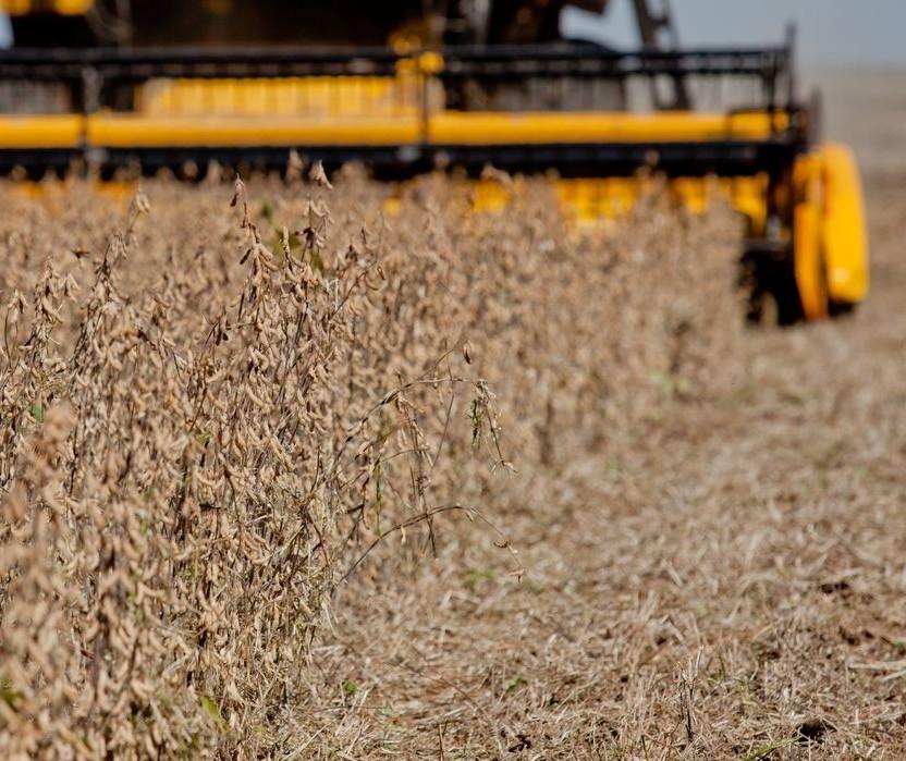 PIB do agro cresce 5,26% no 1º semestre, a maior alta para o período