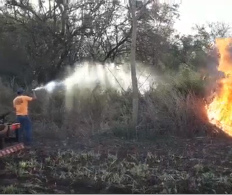 Vídeo: bombeiros combatem incêndio ambiental em Maringá