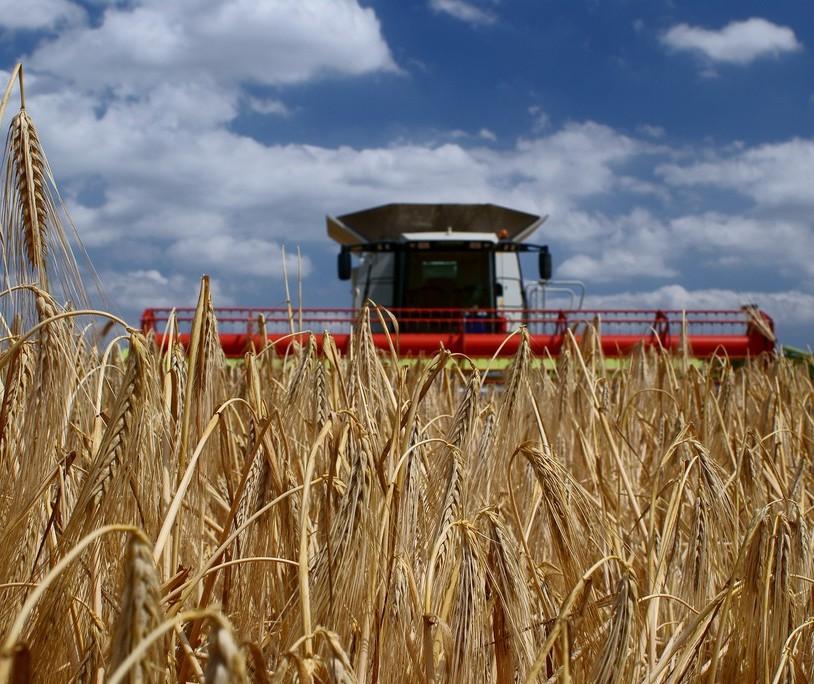 Produtividade agropecuária cresce no Brasil