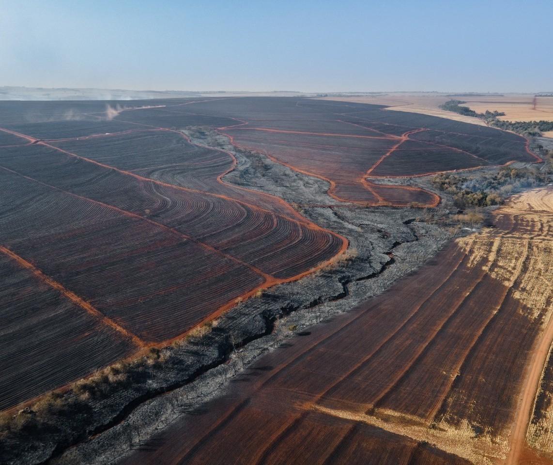 Incêndio de grandes proporções no noroeste é destaque do CBN Paraná